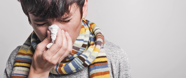Rýma pod drobnohledem: Fakta amýty