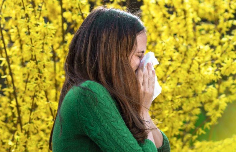 Pylová alergie: Jak na ni vyzrát?
